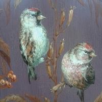 Птички Чечётки обыкновенные авт Нагнибеда НА